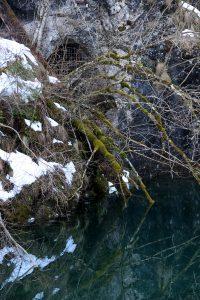 Scropoasa trail 04