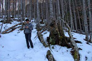 Scropoasa trail 05