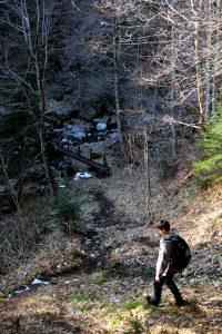 Scropoasa trail 06